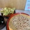 甲斐そば - 料理写真:もりそば+春菊天