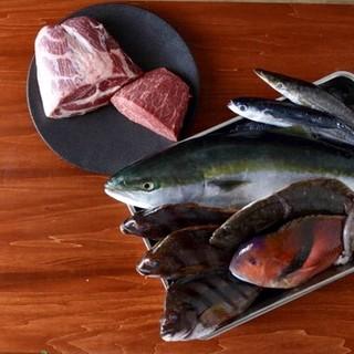 葉山牛や漁港直送の魚、横須賀野菜を渾身のイタリアンで