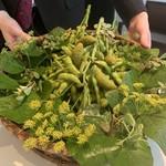 115336237 - アミューズ(枝豆の収穫)