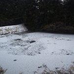 アラスカ - この時期(2月上旬店先の湖は毎朝のように凍りつき、神秘的な世界観を演出してくれます☆