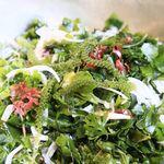 オールデイダイニング アクアリス - 海ぶどう入りサラダ(料理の一例です/メニューは変わる可能性があります)