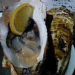 115468661 - 岩手県広田湾産直牡蠣