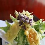 宮古そば 権三郎 - 季節の山菜の天ぷら 紫のは葛の花