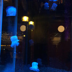 NEO SHOT BAR 深海の洞窟 - 私もクラゲになりたーい