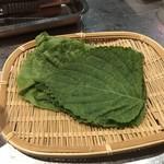 韓国焼肉トントン -