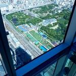 スカイガーデン300 - 眼下に天王寺動物園など(北方面)