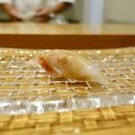 115639100 - [2019/08]寿司⑦ 網走産釣きんきの握り