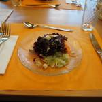 Hotel Restaurant Heidihof - サラダ。ホテル・レストラン・ハイジホフ(Heidihof,マイエンフェルト)食彩品館.jp撮影