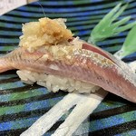 第三春美鮨 - 真鰯 86g 巻き網漁 大阪府岸和田