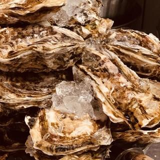 旬の牡蠣や産地直送された魚介のメニューも充実!