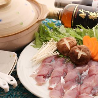 大分から届く自慢の鮮魚を、和食or洋食で◎肉コースもご用意