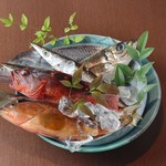 酒と魚菜 さかもと -