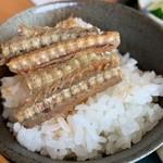 うなぎ専門店 尾方屋 - カルシウム丼(笑)