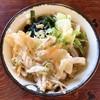うどんばたけ - 料理写真:天ぷらうどん
