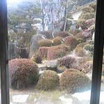 11596586 - 縁側から見る庭
