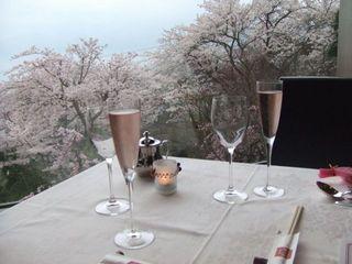 ル ポアン ドゥ ヴュ - とにかくお庭の桜は絶景です。