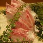さかなや 富ちゃん - イサキの刺身