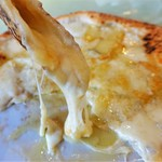 116258053 - モッツァレラ、エメンタール、ゴルゴンゾーラ、パルミジャーノの、 4種類のチーズがてんこもり♡