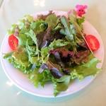 116258082 - 前菜のサラダ