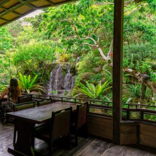 ダイナミックな滝の音。そして四季折々の植物に囲まれたテラス席