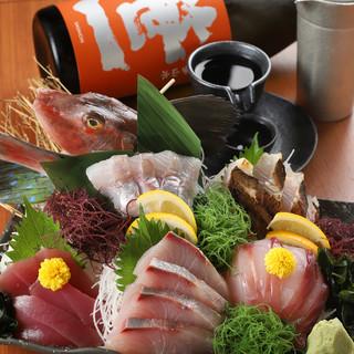 朝採れ直送鮮魚!