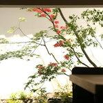 OKU - 春の庭