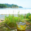 MOLA MOLA CAFE - ドリンク写真: