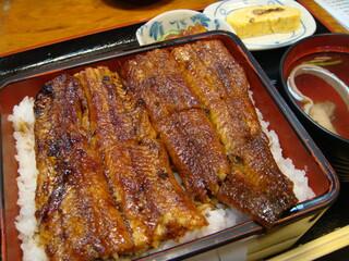 炭火焼うなぎ 東山物産 - 鰻丼