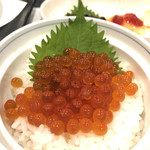一匠 - 料理写真:キラキラ生いくら、美味しいー!