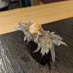 鎌倉 長谷 鮨山もと - 握り 生シラス軍艦