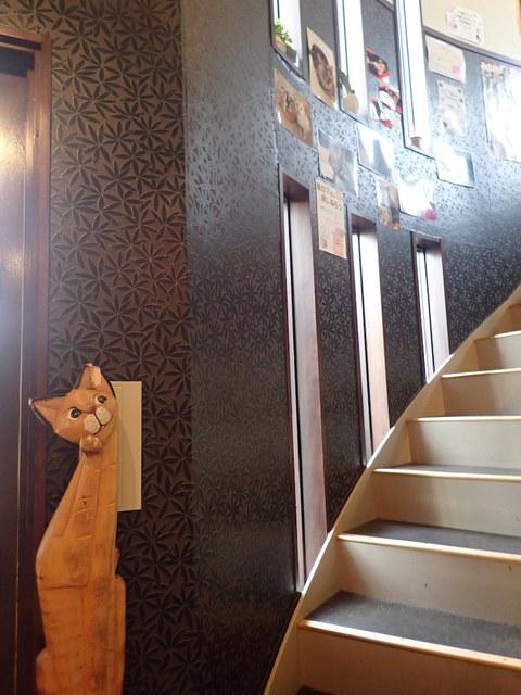 猫カフェ 猫と木 - 階段で2Fに上がるミャ