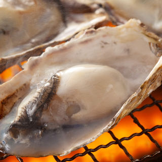新鮮牡蠣の食べ放題【2時間2480円】(L.O.45分前)