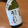 河合酒造 - ドリンク写真:お店おすすめの「出世男・純米酒うねび」