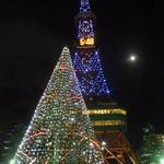 11657570 - 雪祭りのテレビ塔