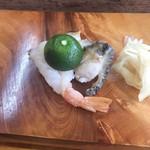 加ま川寿司 - 料理写真:赤海老、蒸し鮑!