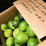 淡路島レモンサワー