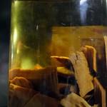 サムライ - 密造酒の目薬酒の原液
