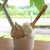 ラ フォンテ - ダブル(¥450)。奄美黒糖・真塩(マシュ)の組合せでお願いした