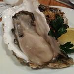 Furenchisakababommarushe - 厚岸産の生牡蠣