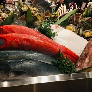 【豊洲市場から直買いの鮮魚を使用した料理の数々】