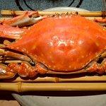 蟹御殿 - 料理写真:竹崎カニ