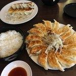 117090213 - 餃子15個とご飯大盛り合わせて1310円。