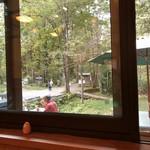 戸隠奥社前食堂 なおすけ - カウンター席からは戸隠神社奥社前の鳥居を眺めることができます