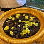 柚木元 - 香茸のご飯