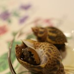 濱正 - つぶ貝