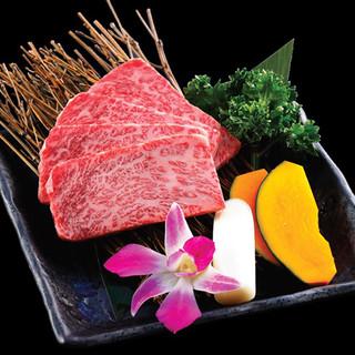 高級焼肉や本格韓国料理を好きなだけ食べられます!!