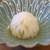 柚木元 - 料理写真:先付け  蕪の天然スッポンの含め煮