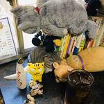 たちのみねこ - 我々の人形とお店のぬいぐるみのコラボww