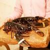 ボニュ - 料理写真:☆【ボニュ】さん…ブルターニュ産オマール海老(≧▽≦)/~♡☆