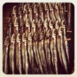 四十八漁場 - お通しの魚